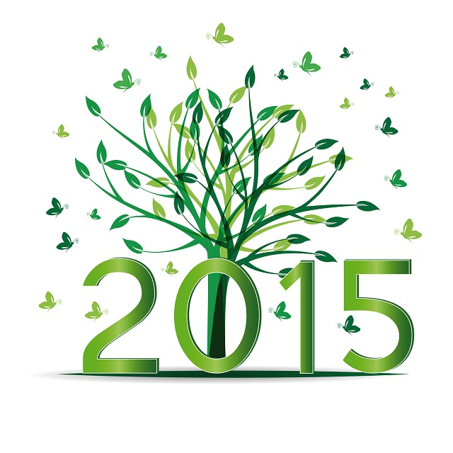 New-year-2015-wishes